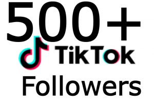 500+ TikTok Followers OR likes Non Drop & High Quality – Instant Start
