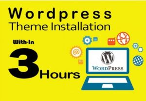 I will install WordPress setup theme and upload demo within 3 hours