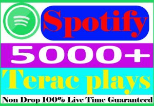 I will submit your 5000+ Spotify track Plays Non Drop Active User And Live Guaranteed