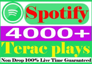 I will submit your 4000+ spotify track plays Organic Non Drop And Live Time Guaranteed