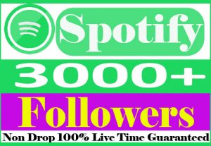 I will do organic 3000+spotify Followers Non Drop And 100% Live Time Guaranteed