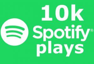 Get 10K+ Spotify ORGANIC Plays or 6000 Worldwide Followers, Permanent Guaranteed