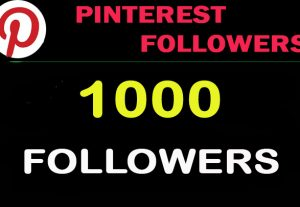 I will Provide 1000 Pinterest Followers to you