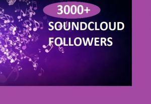 Give you 3000 soundcloud followers Real