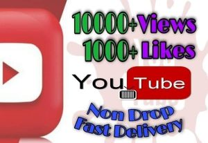 I will provide 10000+ Video Views and 1000+ Likes on YouTube!! Fast and HQ!!