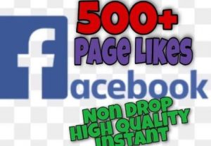 I will provide 500+ Page Like on Facebook!! Fast and HQ!!