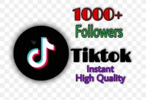 I will provide 1000+ Views on TikTok!! Fast and HQ!!