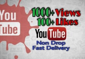 I will provide 1000+ Video Views and 100+Likes on YouTube!! Fast and HQ!!