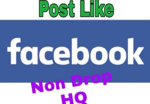 I will provide 1000+ Likes on Facebook!! Fast and HQ!!
