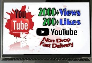 I will provide 2000+ Video Views and 200+ Likes on YouTube!! Fast and HQ!!