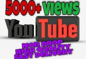 I will provide 5000+ Video Views on YouTube!! Fast and HQ!!