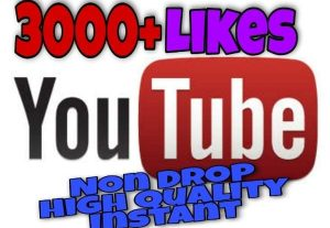 I will provide 3000+ Likes on YouTube!! Fast and HQ!!
