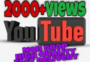 I will provide 2000+ Video Views on YouTube!! Fast and HQ!!