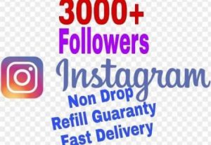 I will provide 3000+ Followers on Instagram!! Fast and HQ!!