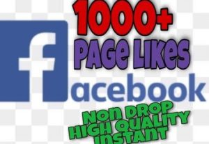 I will provide 1000+ Page likes on Facebook!! Fast and HQ!!