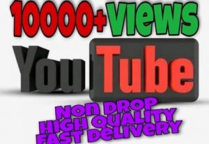 I will provide 10000+ Video Views on YouTube!! Fast and HQ!!
