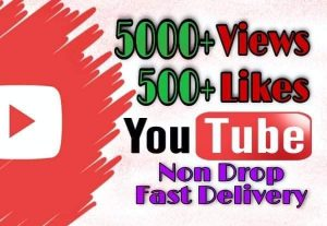 I will provide 5000+ Video Views and 500+ Likes on YouTube!! Fast and HQ!!