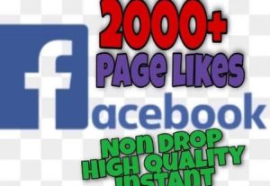 I will provide 2000+ Page Likes on Facebook!! Fast and HQ!!
