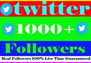 I Will Provide 1000+ Twitter Followes Non Drop Active User And Live Time Guaranteed