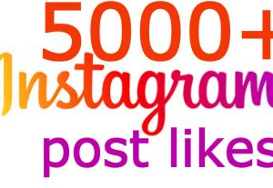 i will send you 5000+ instagram post likes