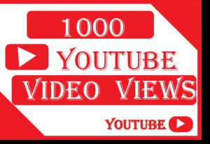 1000+ youtube views 100% real and lifetime guaranteed