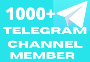 I will promote your 1000+ telegram channel member to real active users