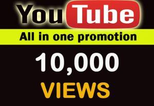 YouTube 10,000 organic views For You