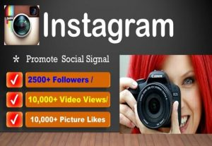 Do Real 6000 Instagram Followers or 5000+ Picture / video Likes or 100,000 Video Views its Real Active users