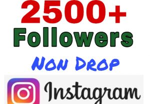 Add 2500+ Followers on Your Instagram. Non Drop.
