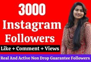 Get 3000 real Instagram followers, No Drop, Lifetime Guarantee