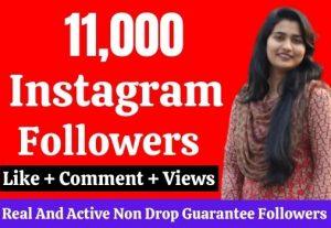 Get 11,000 real Instagram followers, No Drop, Lifetime Guarantee
