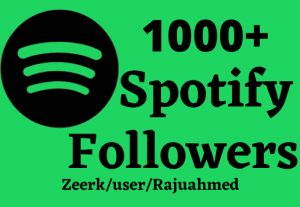 i will give 1000+ Spotify followers non drop life time permanent
