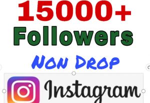 Add 15000+ Followers on Your Instagram. Non drop.