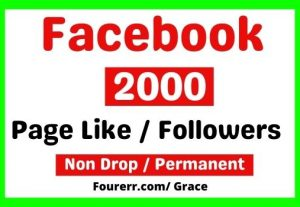 Get Instant 2000+ Facebook Page Likes / Followers, Non-drop, and Lifetime Permanent
