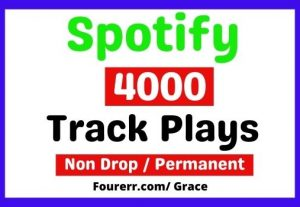 Get Instant 4000+ Spotify High-quality Track Plays, Non-drop, and Lifetime Permanent