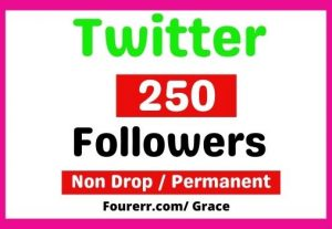 Get Instant 250+ Twitter High-quality Followers, Non-drop, and Lifetime Permanent