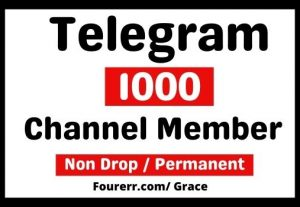 Get Instant 1000+ Telegram High-quality Channel Member, Non-drop, and Lifetime Permanent