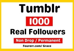 Get Instant 1000+ Tumblr High-quality Followers, Non-drop, and Lifetime Permanent