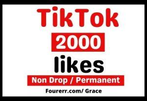 Get Instant 2000+ Tiktok Likes, Non-drop and Lifetime Permanent