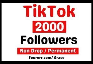 Get Instant 2000+ Tiktok Followers, Non-drop, and Lifetime Permanent