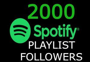 I will send you 2000+ spotify playlist followers