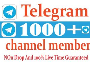 I Will Provide Your Telegram Channel Number Real And Active User