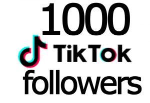 i will provide you 1000 TikTok Followers