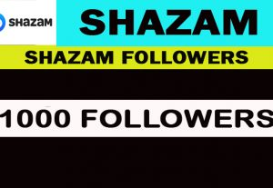 1000 Shazam Followers real, Nondrop, Safe