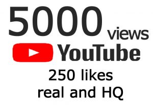 5000 youtube views and 250 Likes real and HQ
