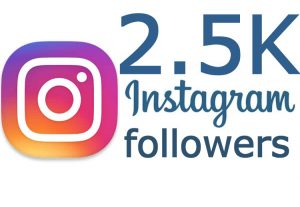 I will add 2500 real followers to your Instagram profile