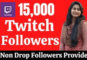 Provide 15000 Real HQ Twitch Followers