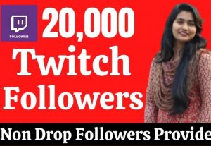 Provide 20,000 Real HQ Twitch Followers