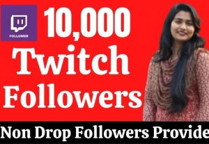 provide 10 000 Real HQ Twitch Followers