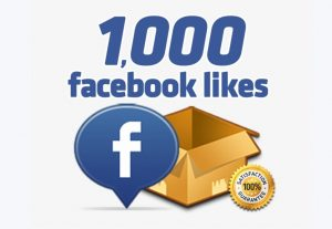 Get 1K+ Facebook Page Likes + Followers, Permanent Active User 100% Guaranteed